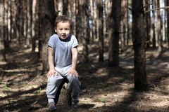 One boy in forest Stock Image