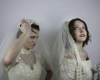 One bride about to rip another bride's veil Royalty Free Stock Image