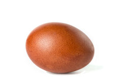 One brown easter egg isolated on white Royalty Free Stock Photos