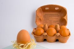 One brown egg with egg box in the background royalty free stock photography
