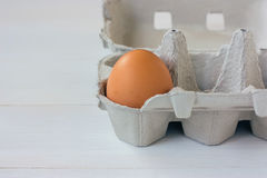 One brown egg in a carton Stock Image