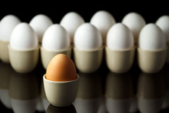 One brown egg in front of white eggs Royalty Free Stock Photos
