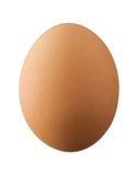 One brown egg isolated on white background Stock Photo