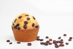 One brown muffin bakery on white background Royalty Free Stock Photo
