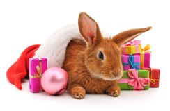 One brown rabbit in a Christmas hat with gifts. One brown rabbit in a Christmas hat with gifts on a white background stock image