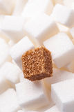 One brown sugar lump in front of lots of white sugar cubes Royalty Free Stock Photo