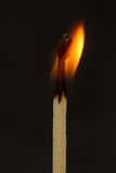 One burning match Stock Photos