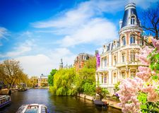 One of canals in Amsterdam. Old town, Netherlands with lilac flowers, toned royalty free stock image
