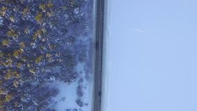One car driving through the winter forest on country road. Top view from drone. Aerial view of a road through the forest stock footage