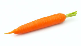 One carrot Stock Photography