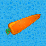 One carrot on color background. vector illustration Stock Photos