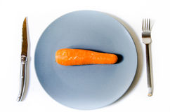 One carrot in the middle of a plate Stock Photography