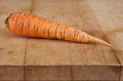 One Carrot Stock Image