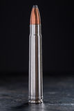 One cartridge with copper bullet and lead tip Royalty Free Stock Image