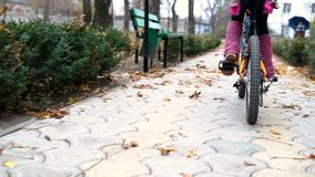 One caucasian children rides bike road in autumn park. Little girl riding black orange cycle in park.. One caucasian children rides bike road in autumn park stock video footage