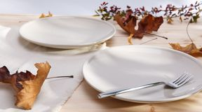 One ceramic plate Royalty Free Stock Image
