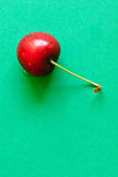 One Cherry Royalty Free Stock Images