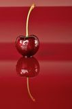 One Cherry Stock Images