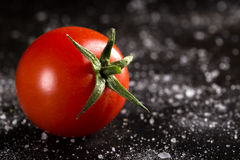 One cherry tomato Stock Photography