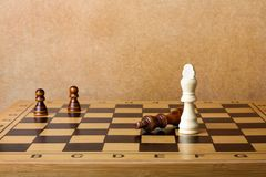 One chess king dominating another Royalty Free Stock Image