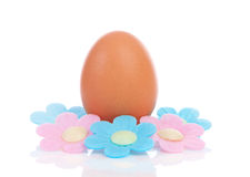 One chicken egg with flowers Stock Images