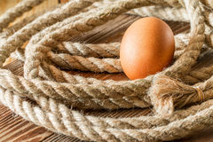 One chicken egg with a rope Stock Photography