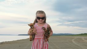 One children stay on the beach and dogs. Kid play with dogs. They squeeze them, throw them up. The girl are wearing sunglasses. Dogs Toy Terrier. Baby keeps stock video footage
