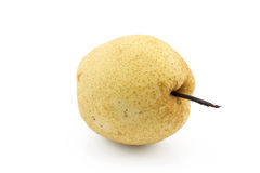 One chinese pear on isolated white background Stock Photography