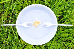 One chips on a white plate with forks Stock Images