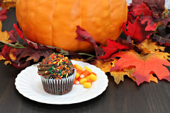 One chocolate cupcake decorated for fall with an autumn backgrou Stock Images