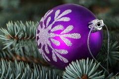 One christmas ball over tree. Royalty Free Stock Image