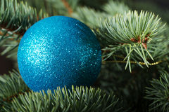 One christmas ball on a tree. Royalty Free Stock Photos