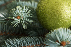 One christmas ball on a tree. Royalty Free Stock Images