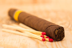 One cigar and five matches with red heads. Royalty Free Stock Images