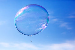 One clean soap bubble flying in the air, blue sky. Stock Images