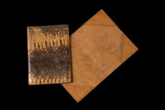 One closed and one to turn on the cover sheet of the snake skin Royalty Free Stock Photography