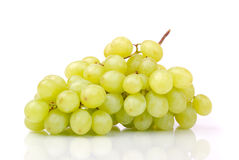 One cluster of green grapes Royalty Free Stock Photo
