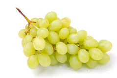 One cluster of green grapes Royalty Free Stock Photos