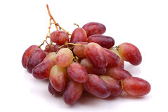 One cluster of red grapes Stock Image