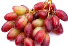 One cluster of red grapes Stock Photography