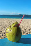One coconut with a coir as a soft drink on a tropical beach Royalty Free Stock Image
