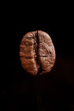 One coffee bean dark espresso on a black background Royalty Free Stock Images