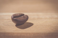 One coffee bean Royalty Free Stock Image