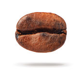 One coffee bean on white background Stock Image
