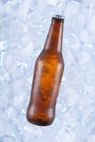 One cold beer Stock Photography