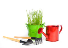 Spring gardening. One colored bucket with grass and one red water can on a white background. There are rake and shovel in the foreground. Buckets and can made of Royalty Free Stock Photos
