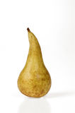 One conference pear with white background Royalty Free Stock Photo