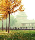 One Corner of Forbidden City in fog Royalty Free Stock Images