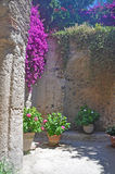 One of the courtyards of the famous Aragonese castle. Filled with bright flowers Stock Images