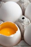 One cracked egg Stock Photography